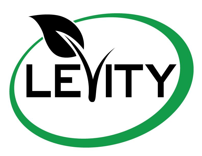 Levity-Logo-GB-.jpg