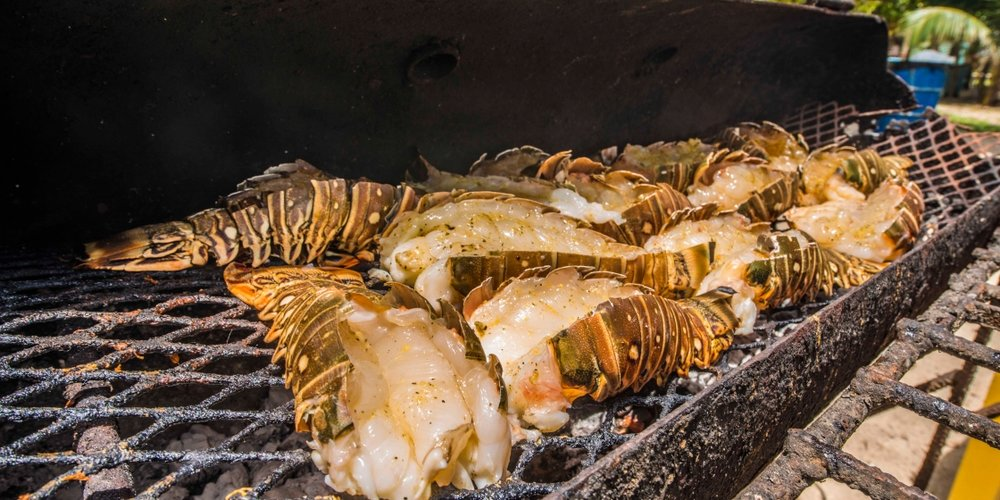 Belizean spiny lobsters on the grill- YUM!