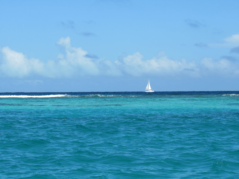 Crystal clear waters and wind make for a perfect sailing day in the BVI's