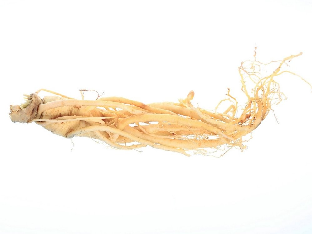 product_Chinese-Ginseng.jpg