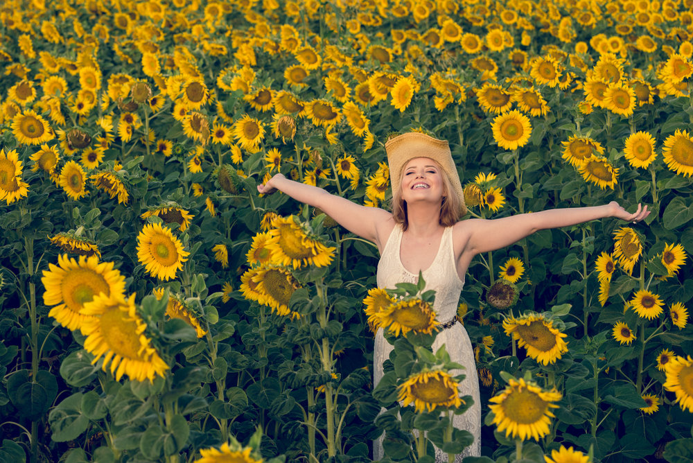 sunflower-joy_t20_9GjLG6.jpg