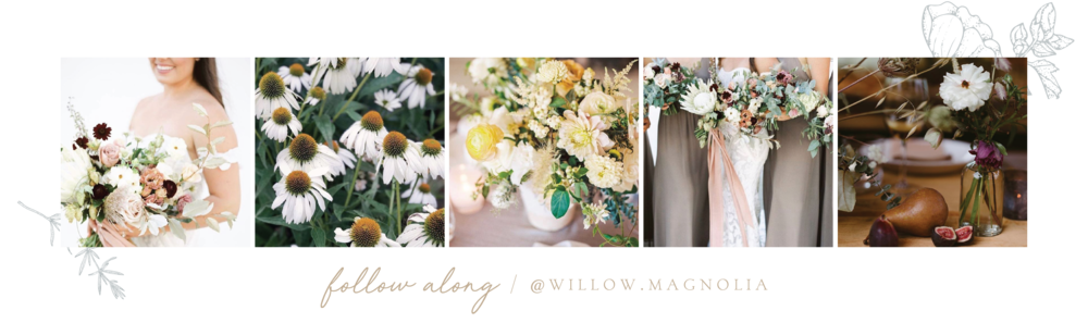 Willow & Magnolia Instagram Images 11_06_18-02.png