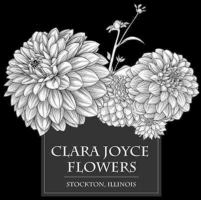 Csa Information And Agreement Clara Joyce Flowers