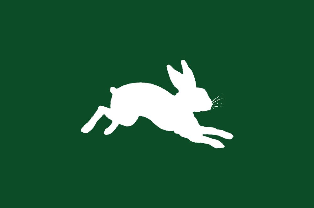 bunny-car.png
