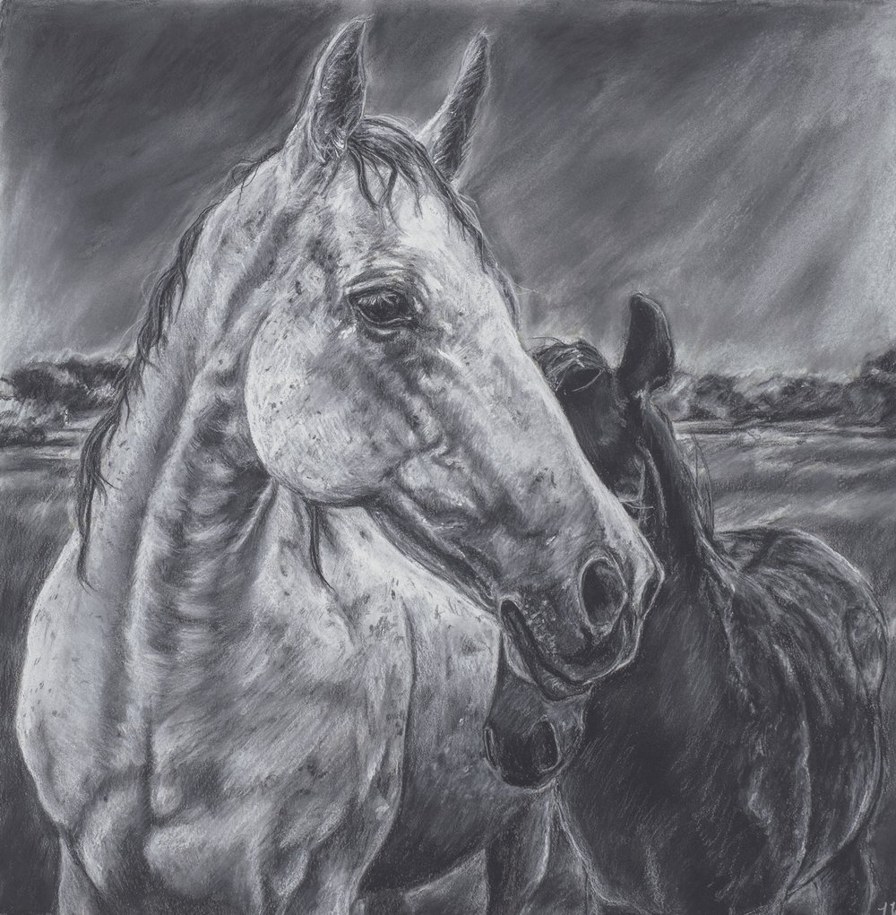 Charcoal Horse with Baby.jpg