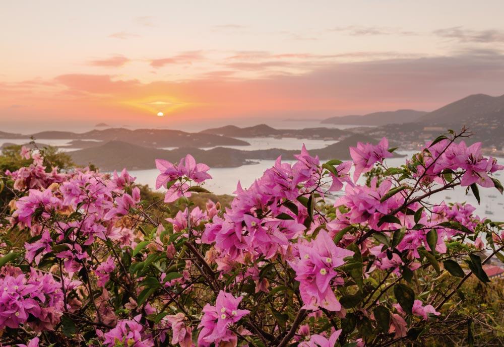 Islas Virgenes-1.jpg