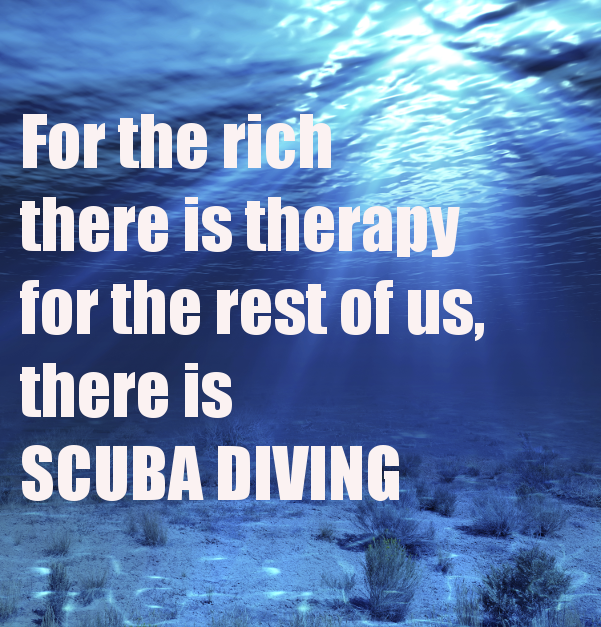 dive free 2.png