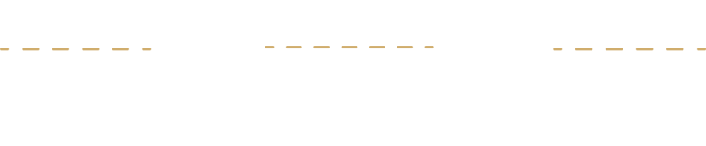 salsa pricing.png
