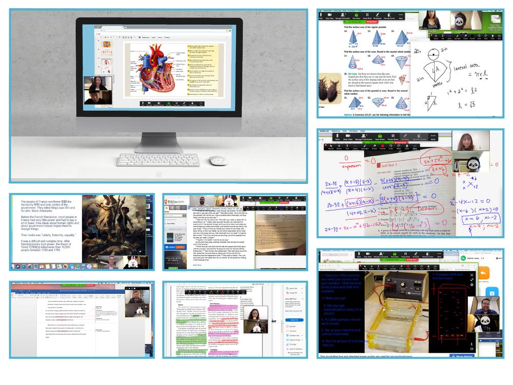 网页-课堂展示拼图_画板 1.png