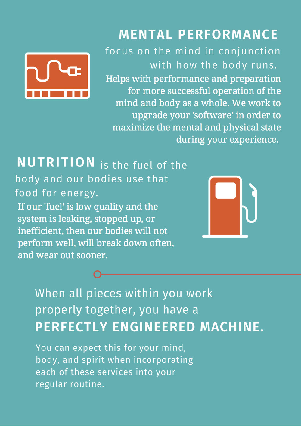 thrive_machine infographic 2.jpg