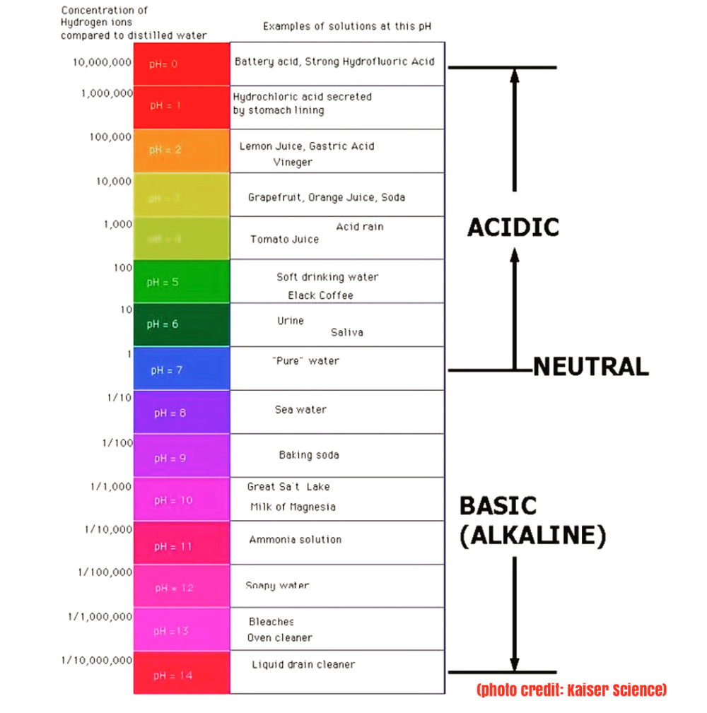 """The pH scale ranges from 0 to 14. At the middle of the scale lies the neutral pH of 7. """"Pure water"""" is an example of a neutral pH."""