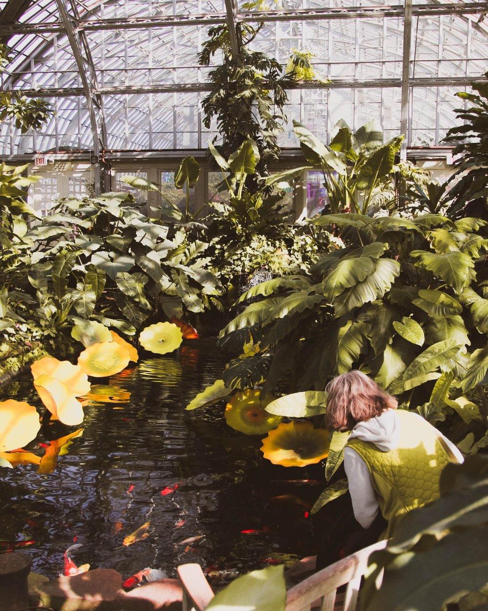 chicago gardener conservatory