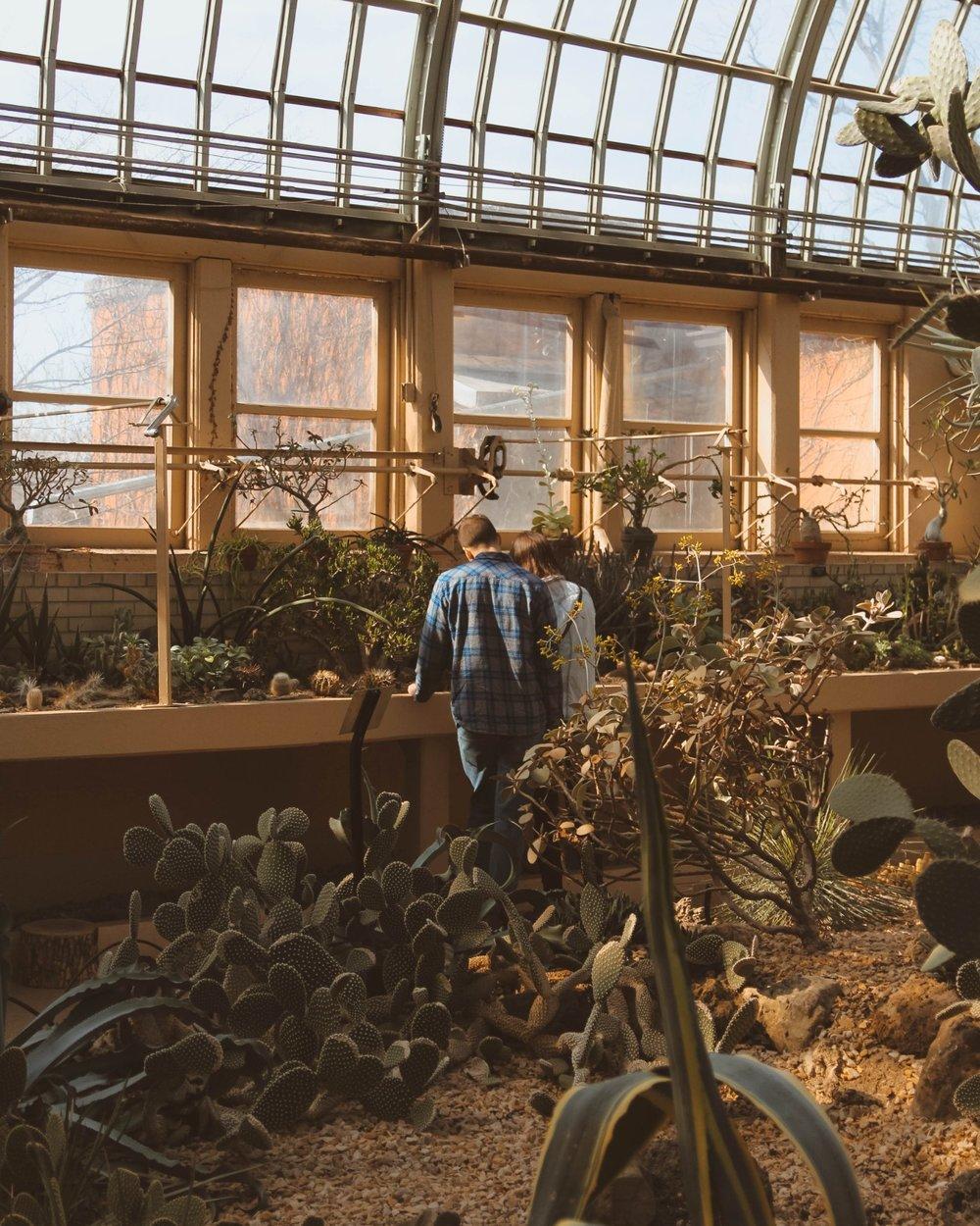 chicago gardener conservatory 2