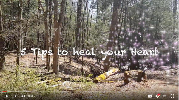 The Sanctuary Heal Your Heart YouTube