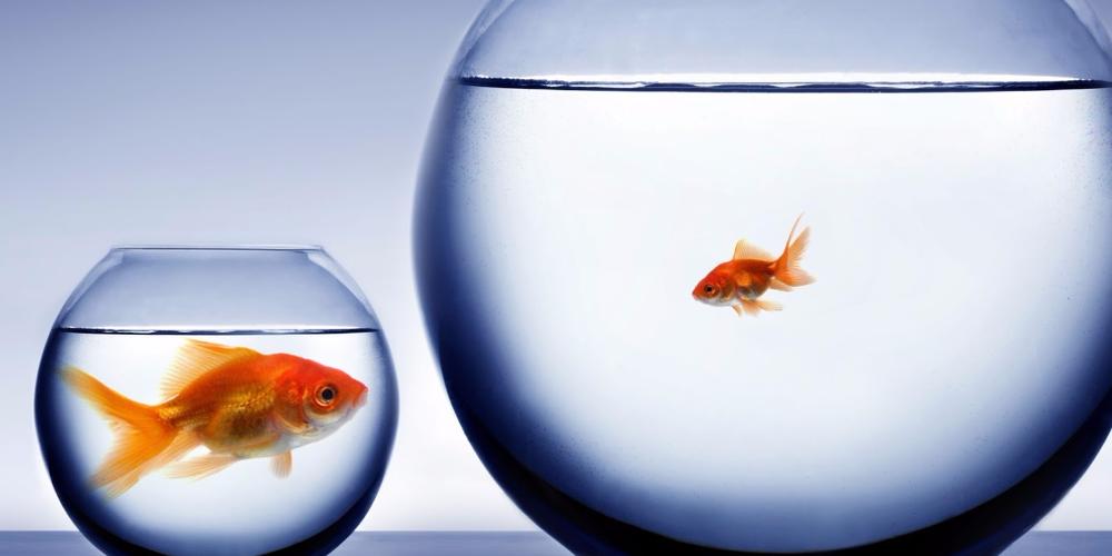 Abundance-Mindset-vs-Scarcity-Mentality.png