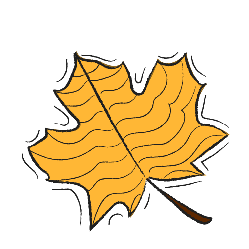 AUTUMN no TEXTArtboard 1.png
