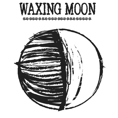 waxing moon W TEXTArtboard 1.png