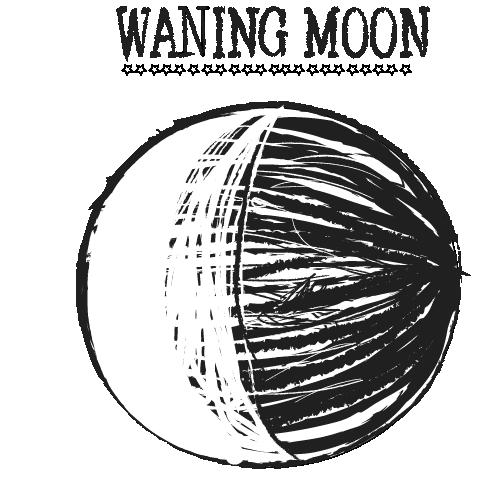 waning moon w textArtboard 1.png