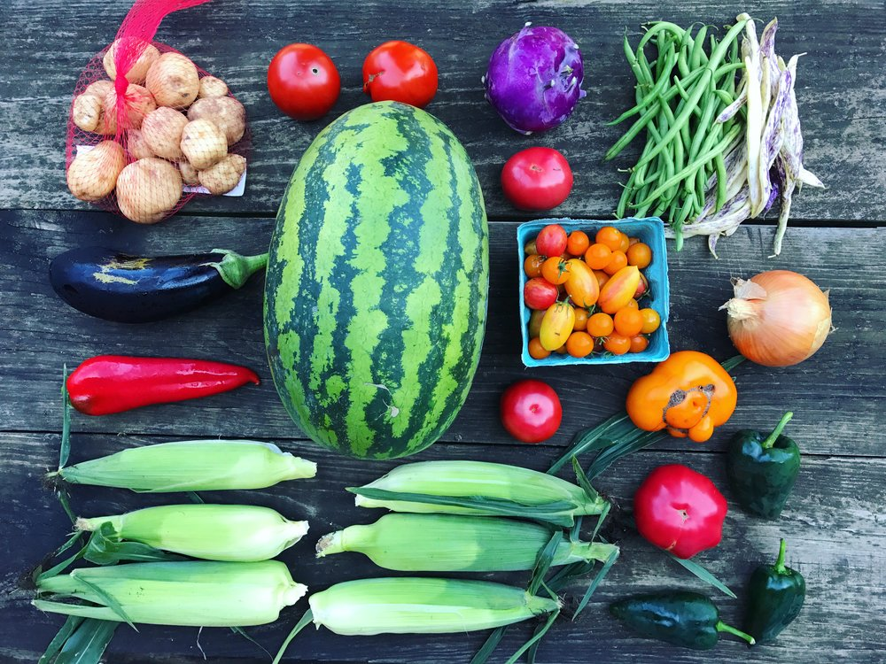 August Large Share // 8-12 items //  Sample box includes: Sweet corn, watermelon, tomatoes, cherry tomatoes, Italian red frying pepper, poblano peppers, eggplant, white potatoes, mixed beans, kohlrabi, and onion.