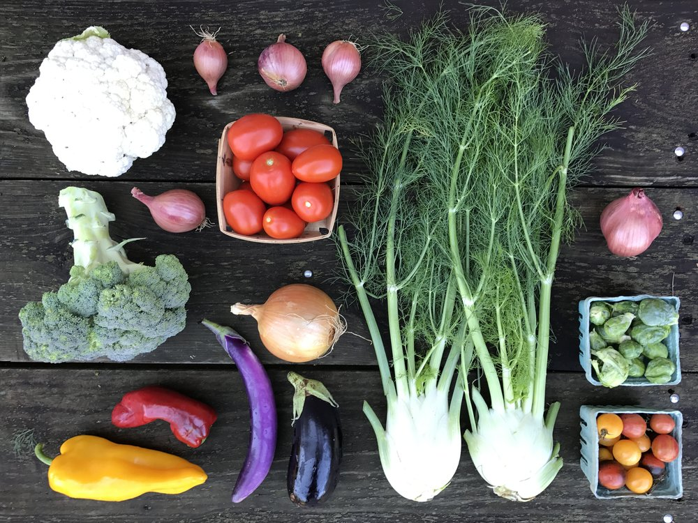 October Large Share // 8-12 items //  Sample box includes: Broccoli, cauliflower, Brussels sprouts, tomatoes, cherry tomatoes, eggplant, Italian frying peppers, fennel, shallots and onion.