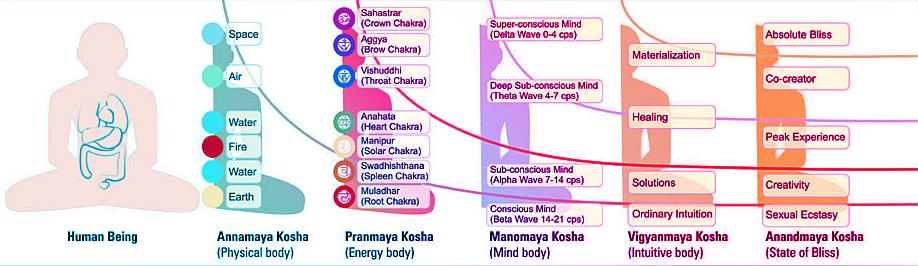 five-koshas-diagram.jpg