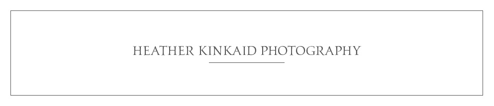star_hansen_gallery_banner_HEATHER_KINKAID_PHOTOGRAPHY.jpg