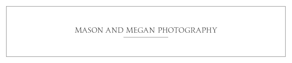 star_hansen_gallery_banner_MASON_MEGAN_PHOTOGRAPHY.jpg