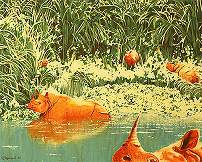 Rhinos of the Water  copyright Sarah Soward.