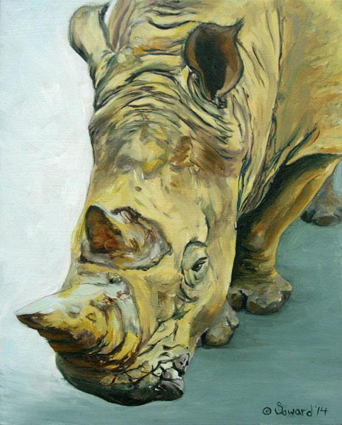 Stanley Rhino copyright Sarah Soward.