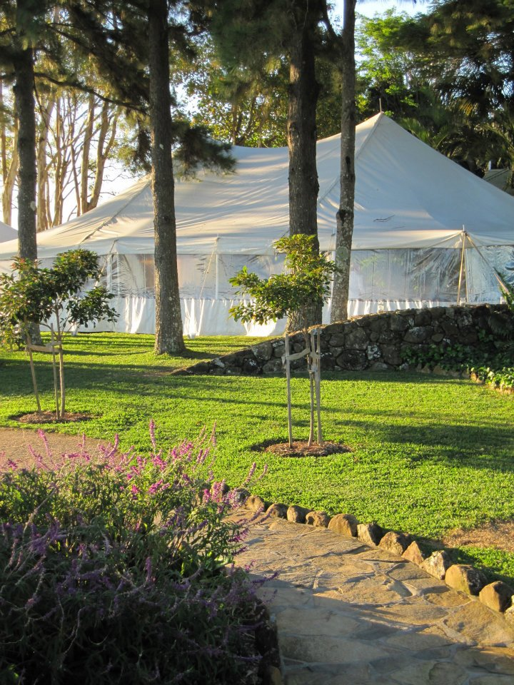 Meandering Pathways to the Marquee