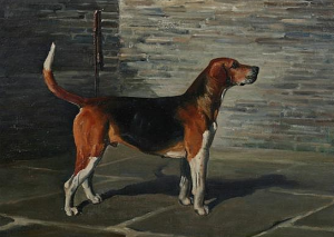 Franklin Brook Voss (American, 1880-1953).  Belvoir Rummager – Hound , signed, dated 1928