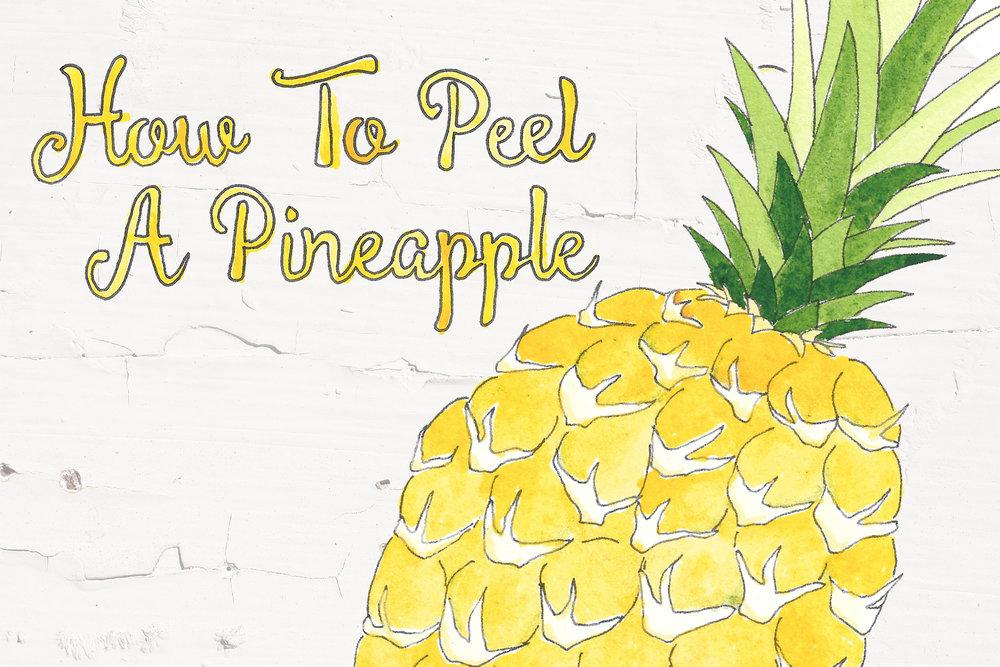 illustration slide_pineapple.jpg