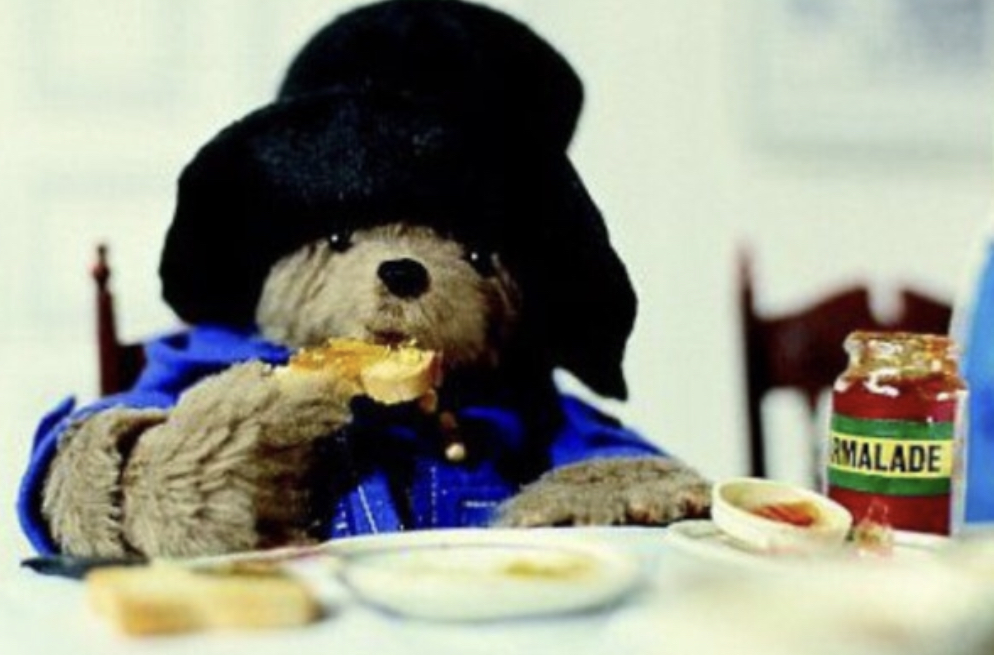 Who's this cute bear? Probably Paddington!