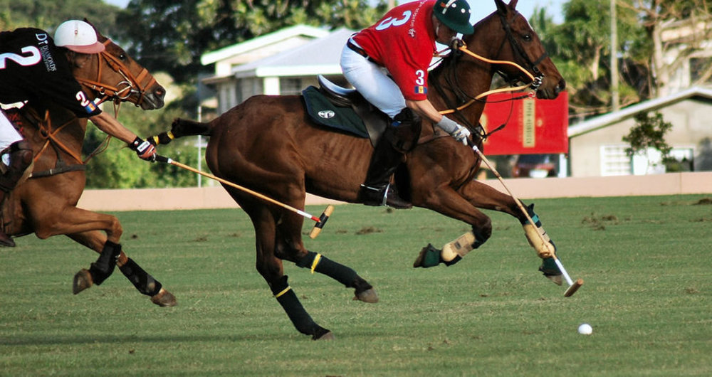 Prince Harry playing polo in Barbados