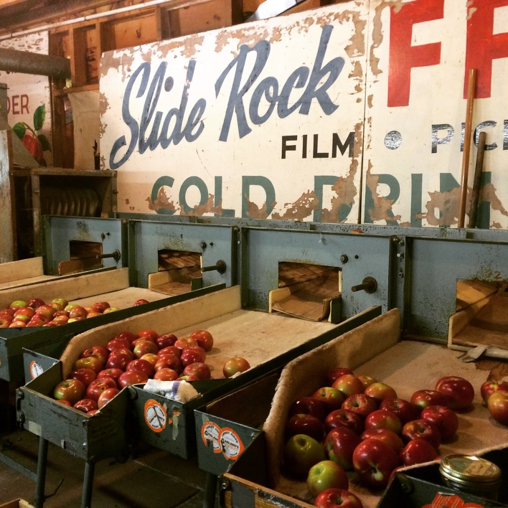 Old-time apple sorting at Orchard Canyon on Oak Creek (formerly Garland's Lodge)