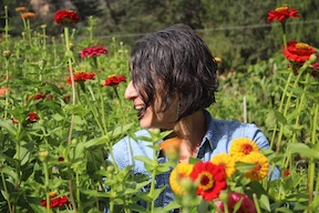Kate Watters in her Zinnia patch