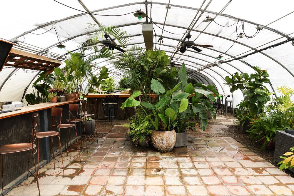 greenhouse-bar-nashville-things-to-do-where-to-play-nashvegas.jpg