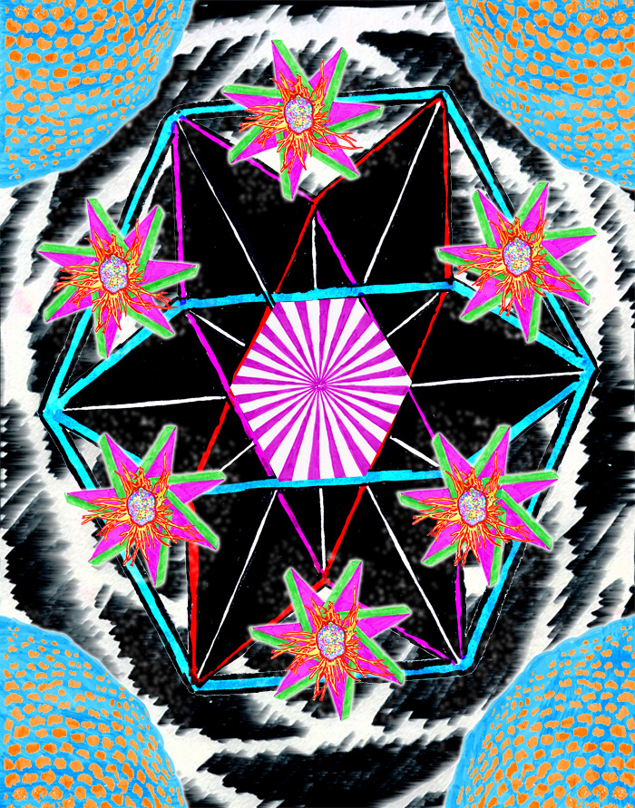 17 whitestar.jpg