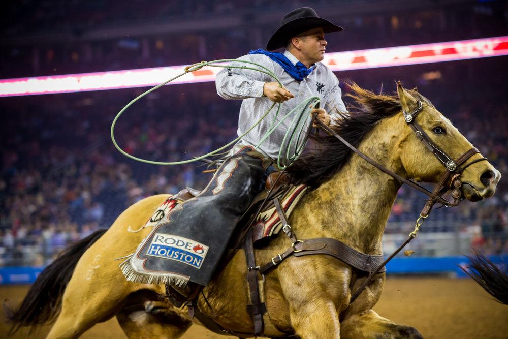 Pete - 2010 buckskin geldinggrade quarter horse15.3 hands1200 lbs