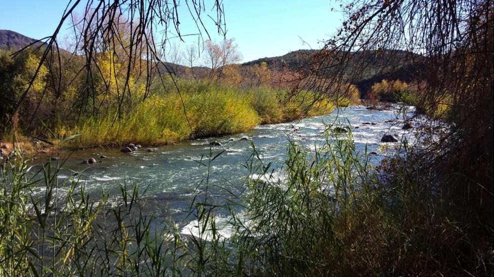 verde-River.png