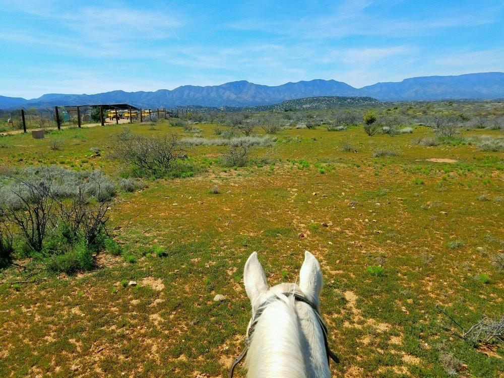 wild western horseback view.jpg