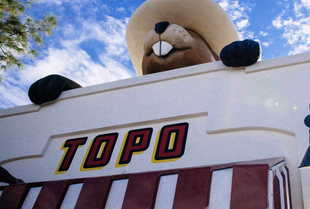 TOPO - Topo serves up seriously delicious take-away foods for a quick meal or a leisurely stroll in Gilbert's Heritage District