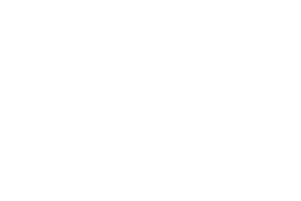 DezMerrowPhotography Logo Cleaned Transparent.png