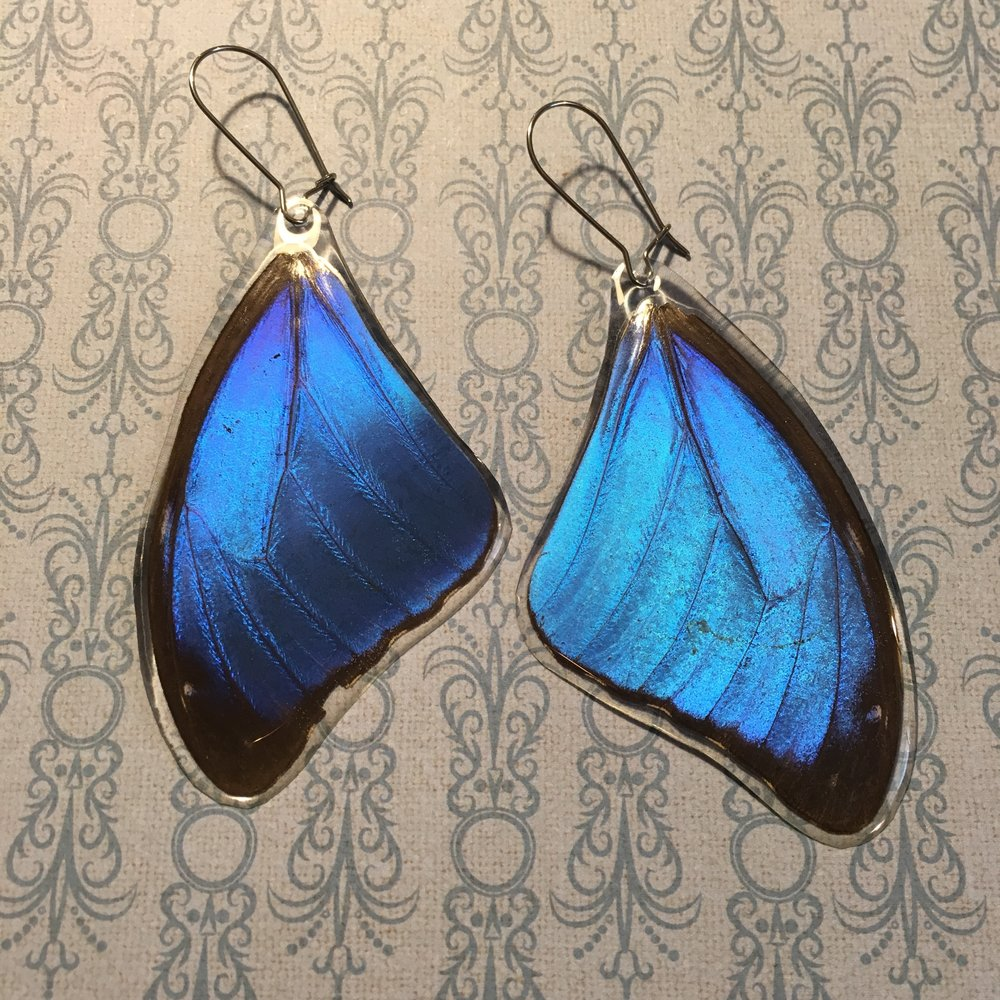 Stacey McNiell - Insectsy Morpho Earrings - stacey mcniell.JPG