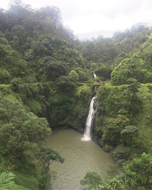 i swam in that #waterfall above the waterfall #maui #roadtohana