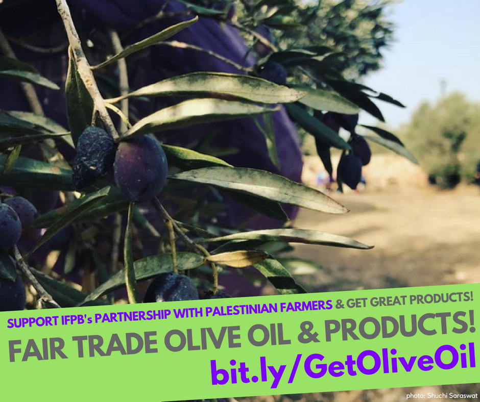 Buy Olive Oil Shareable 1.png
