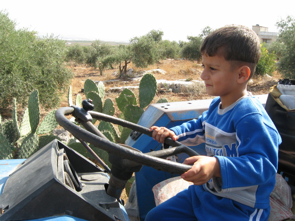 kid on tractor (D48 - jacob pace).jpg