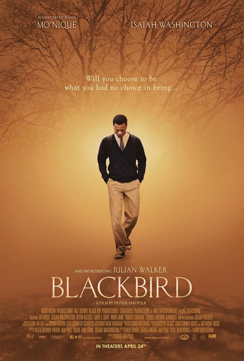 blackbird_ver2_xlg.jpg