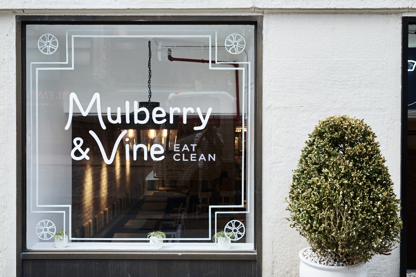 Mulberry and Vine    55W 27th St. New York, NY 10001