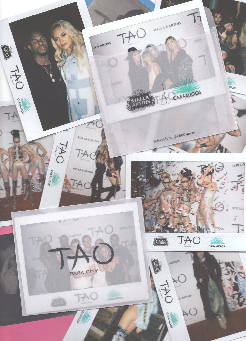 Tao Group | Casamigos | Stella